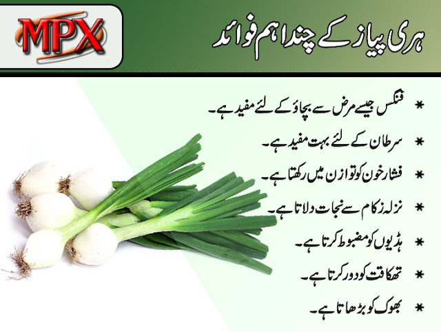 Benefits of Green Onions In Urdu
