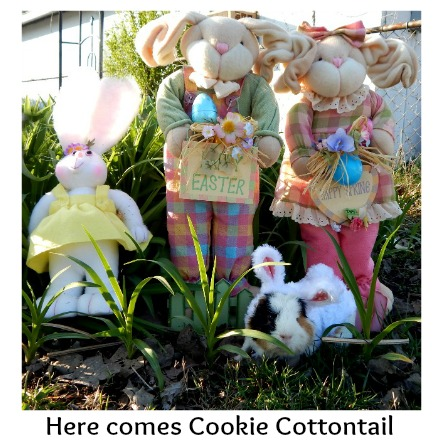 Here comes Cookie Cottontail #easter