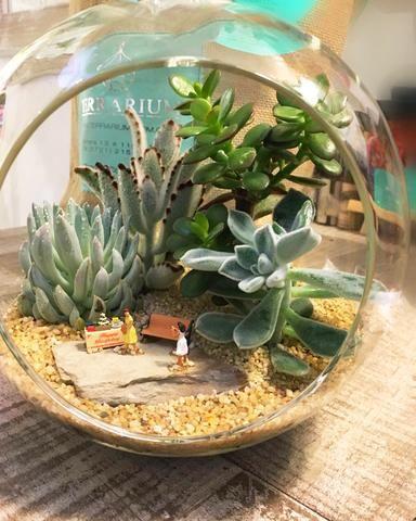 Γυάλες με φυτά - Terrarium