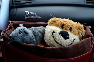 Zwei Kuscheltiere auf einer Reise in einer Tasche