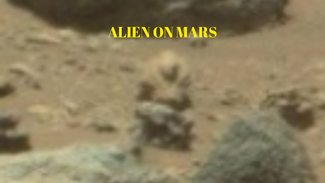 Here is an image of a real Alien or Martian soldier looking at the Mars Rover.