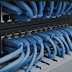 Trusted World wide web Forum Internet hosting With Low cost Hosting