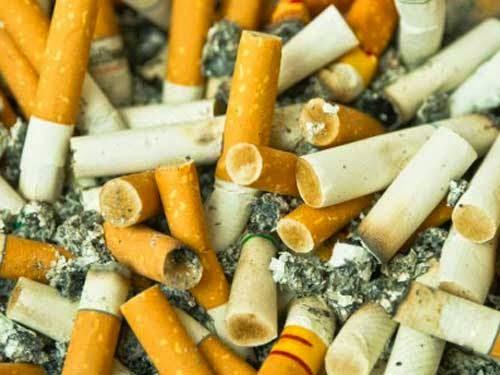 Chế tạo pin từ... đầu lọc thuốc lá đã qua sử dụng