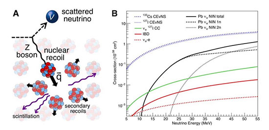 Coherent Elastic Neutrino-Nucleus Scattering yields big sensitivity improvements (Source: COHERENT Collaboration)