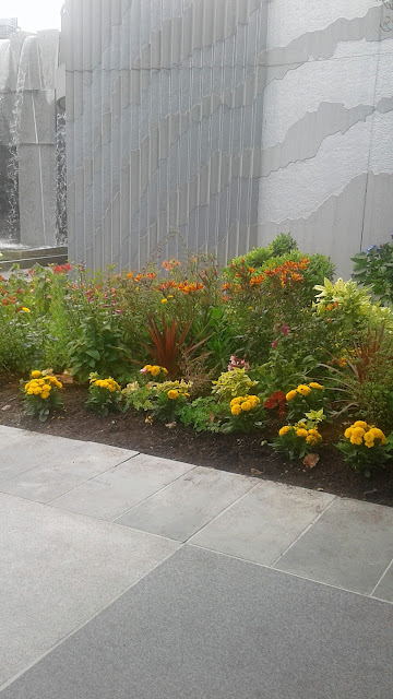 a flower garden at Yerba Buena Gardens