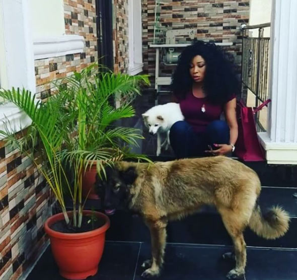 "Video: Actress Lizzy Anjorin tells her dog to ""stop jealous (sic)"" during photo session"
