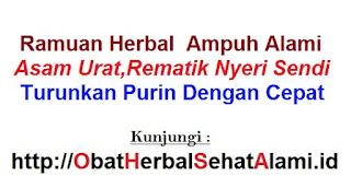 Resep Obat herbal alami pengobatan asam urat tinggi secara tradisional