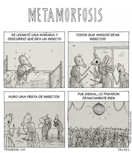 Meme de humor sobre el libro La metamorfosis, de Franz Kafka