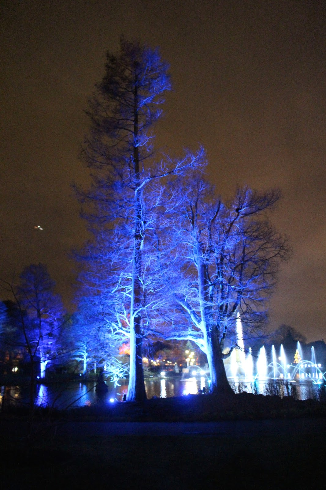 kew gardens light trail 2015