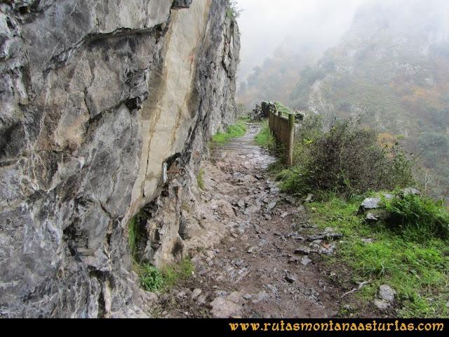 Ruta de las Xanas y Senda de Valdolayés: Puente de madera en la ruta de las xanas