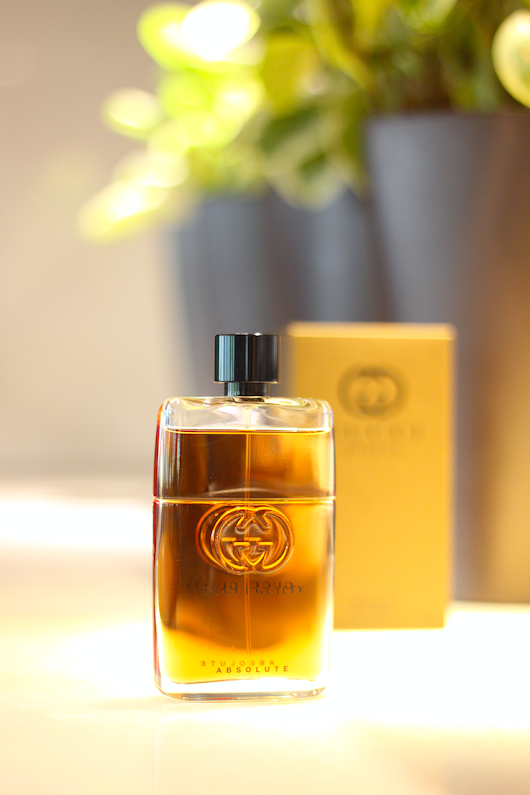Introducing the NEW Gucci Guilty Absolute | An Absolute Seal Of Masculinity And Its Freedom
