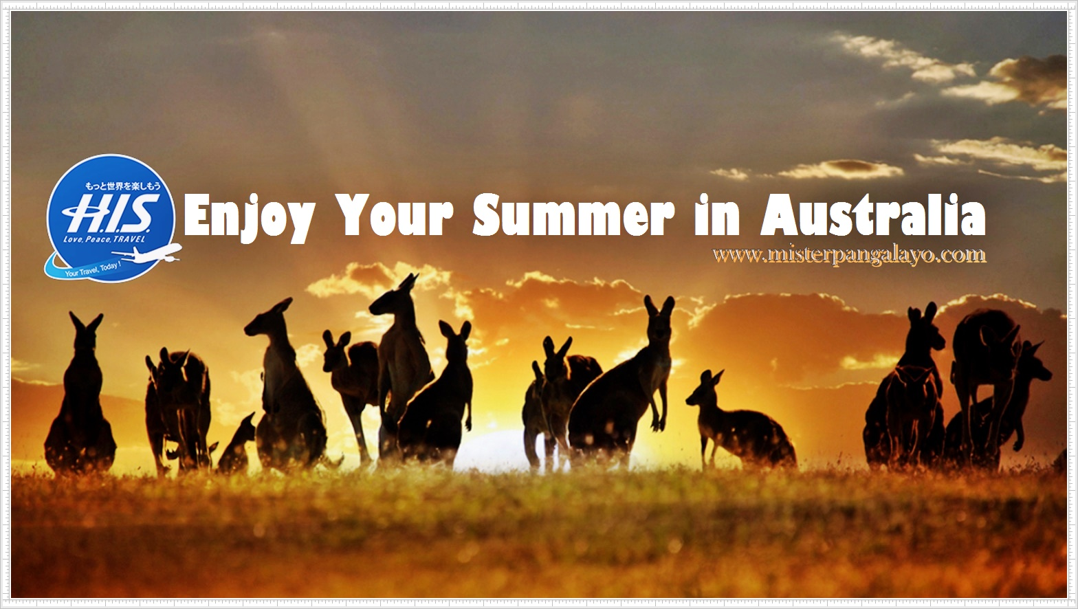 Enjoy Your Summer in Sydney - Australia