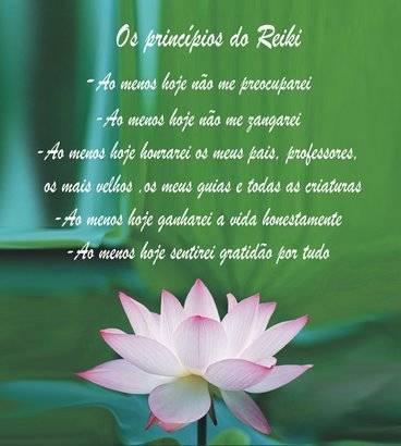 Resultado de imagem para principios de reiki