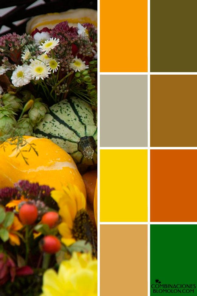 combinacion_de_colores_variedad_7