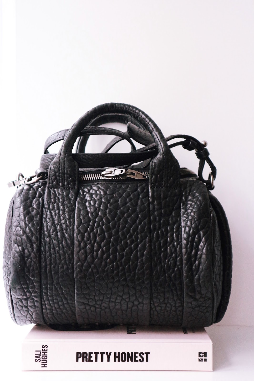 What I Looked For When Buying A Pre-Loved Bag Alexander Wang Rockie