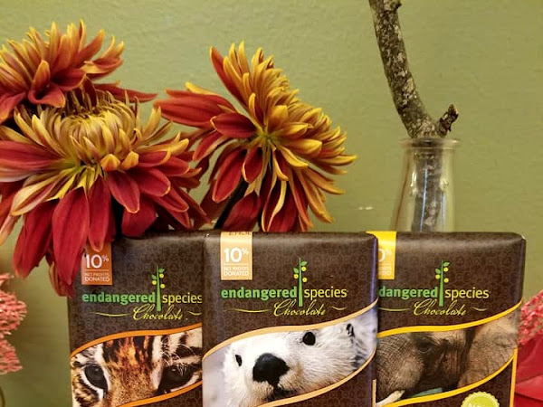 Give 'em Chocolate & Give Back with Endangered Spicies Chocolate for the Holidays #MBPHGG18