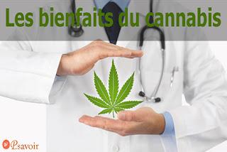Les bienfaits du cannabis  remède naturel