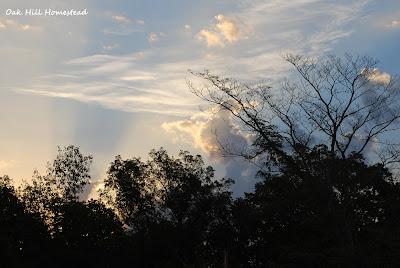 Sunbeams reach from horizon to the heavens