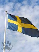 drapeau-suedois-fete-nationale-juin