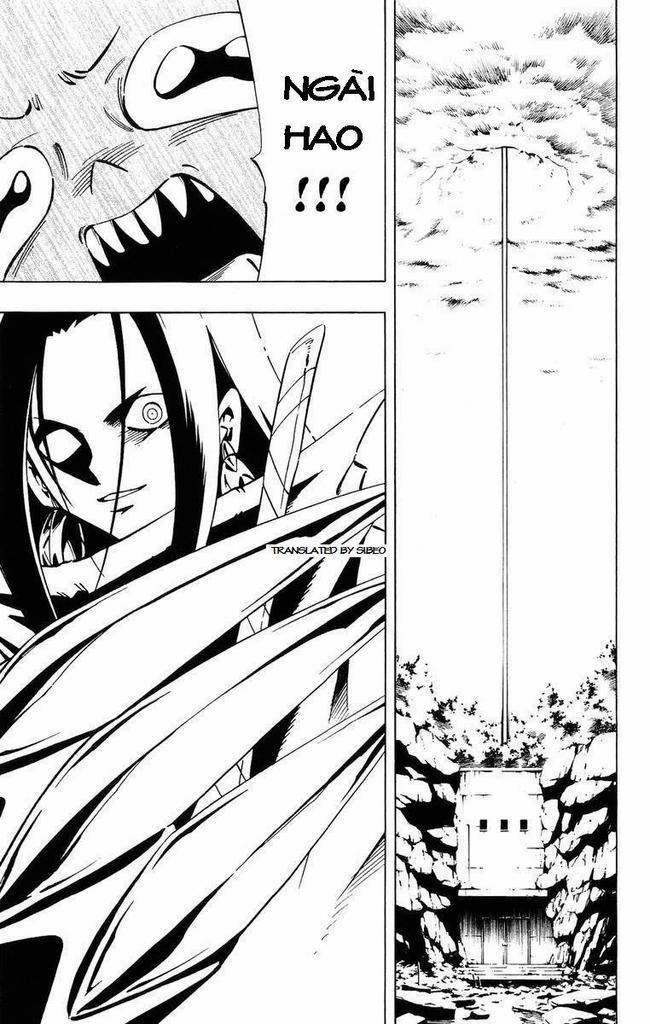Shaman King [Vua pháp thuật] chap 232 trang 17