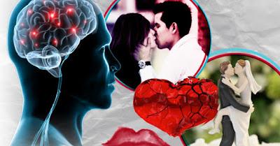 Amor y desamor cerebro