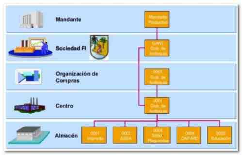 Elementos Organizativos en SAP - Consultoria-SAP