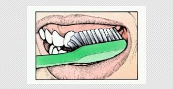 bersihkan gigi dan gusi bagian luar