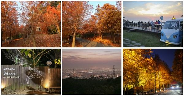 台中沙鹿|MITAKA 3e CAFE|咖啡、夜景、雜貨、夕陽,還有上百棵的落羽松