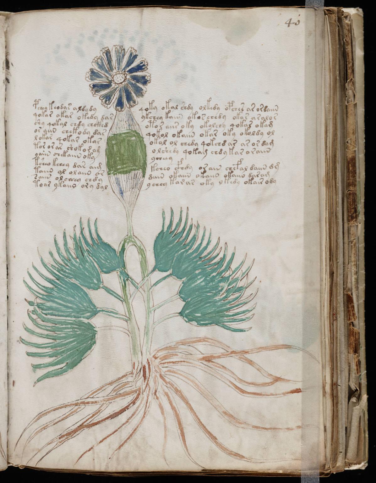 manuscrito077