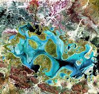 Karnegi Australia