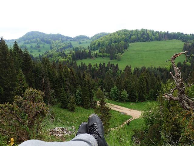 Jemeriskowa Skałka - panorama na Wysoką i okolice Małych Pienin
