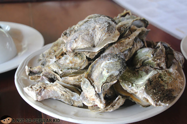 Fresh Oysters of Iloilo