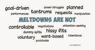 Autistic Meltdowns are not Tantrums