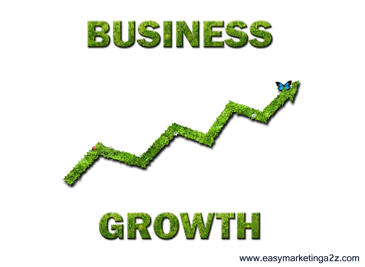 "25 High Quality Free Pictures on ""Growth"" ""Business Growth ..."
