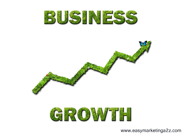 Business Growth 4