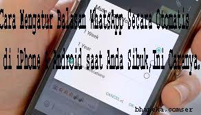 Cara Mengatur Balasan WhatsApp Secara Otomatis  di iPhone & Android saat Anda Sibuk,Ini Caranya.