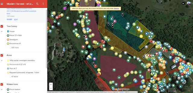 how to map a site google mymaps reforestation