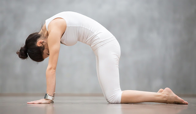 [Image: yoga-giam-dau-xuong-cut.jpg]