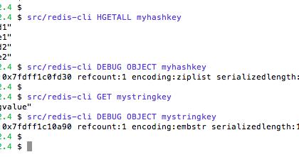 redis key size