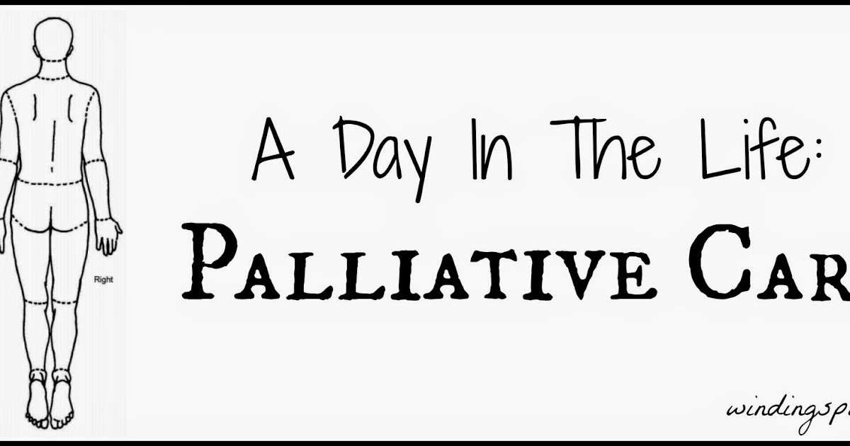 Winding Spiral Case: A Day In The Life: Palliative Care