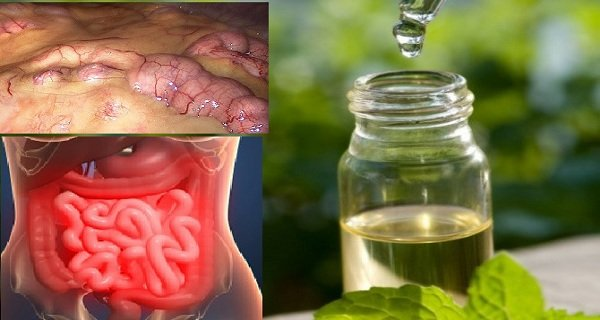 Remove All Toxins From the Body in 3 Days: A Method That Prevents Cancer, Removes Fat and Excess Water