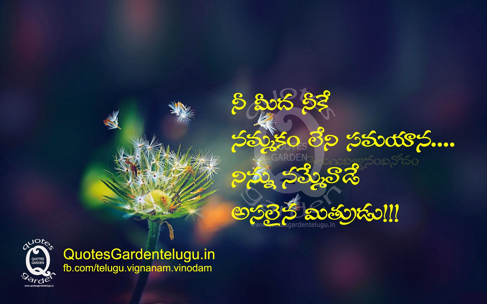 Best Telugu Friendship Quotes with images