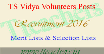 Deo Nalgonda Vidya Volunteers VVs Selection Lists Merit List 2016-17
