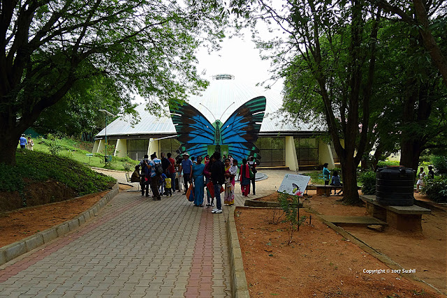 Butterfly Park, Bannerghatta National Park, Bangalore