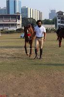 Randeep hooda with a Beautiful HorseJPG (5).JPG