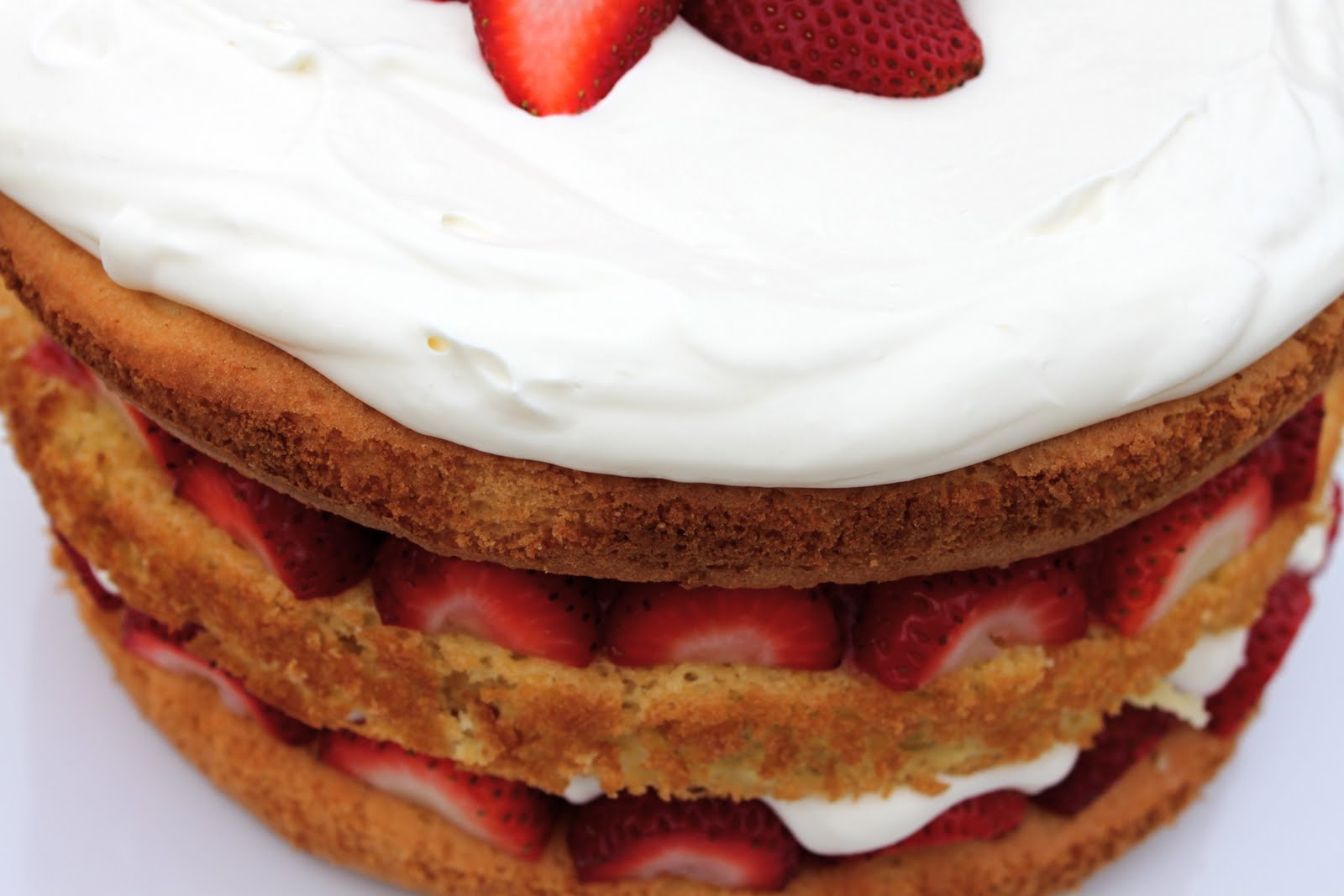 A Bountiful Kitchen Cook S Illustrated Strawberry Cream Cake
