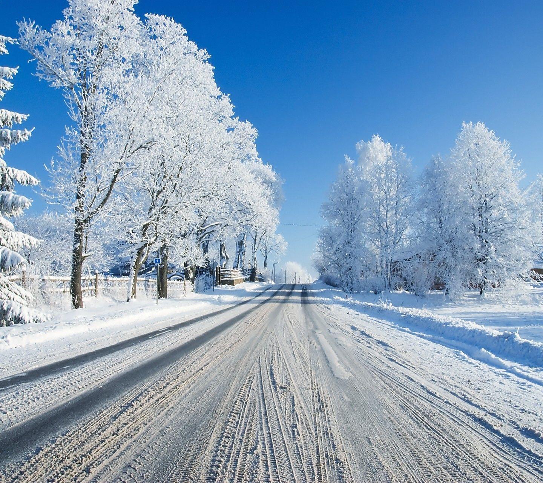 Free Winter Screensavers