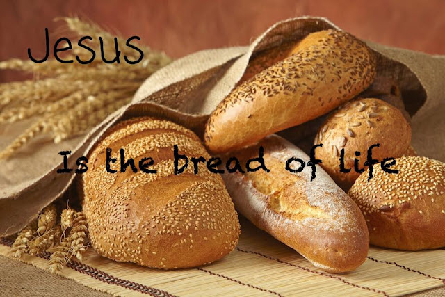 The Bread of Life {Mark 8}
