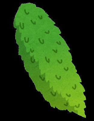 ゴーヤのイラスト(野菜)