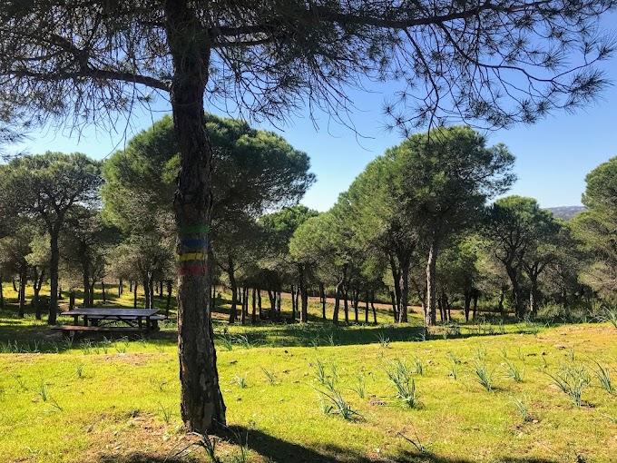 Un día de campo y senderos en la Mata de Conceição